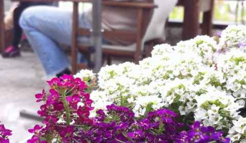 Μύρισε άνοιξη στο Λίθο λίγο πριν το Πάσχα | Spring has arrived in Lithos restaurant in Zagori, Greece