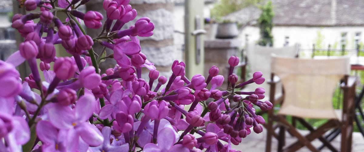 Spring has arrived in Lithos restaurant in Zagori, Greece | Ο Λίθος φόρεσε τα ανοιξιάτικά του